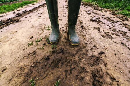 Dirty farmer's rubber boots on muddy country road. Agronomist is walking the pathway through cultivated fields after heavy rain storm. 免版税图像