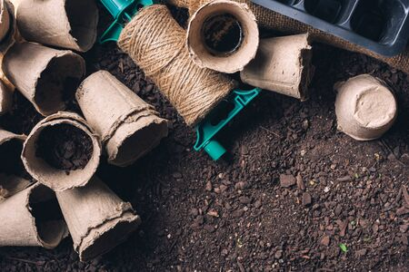 Biodegradable peat pot on greenhouse compost humus soil, organic farming and cultivation