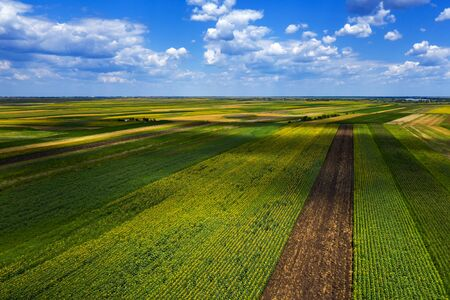 Aerial view of cultivated agricultural fields in summer, beautiful countryside patchwork landscape from drone pov