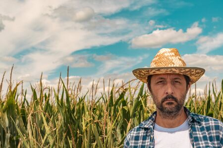 Portrait of serious agronomist in corn maize field. Farmer with straw hat looking at camera.