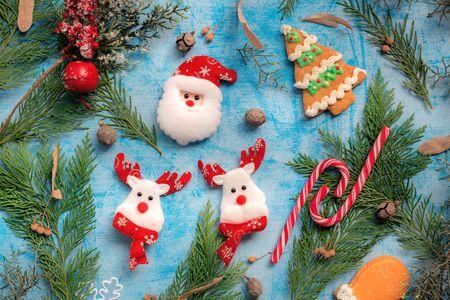 Santa Claus and raindeer christmas decoration, top view flat lay