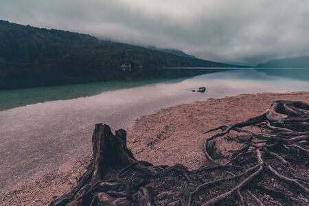 Crack of dawn on Lake Bohinj in Slovenia, beautiful tranquil landscape with autumnal fog on the lakeshore