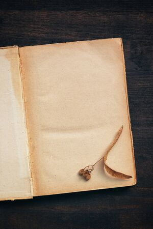 Vintage book blank pages mock up top view flat lay on dark wooden background