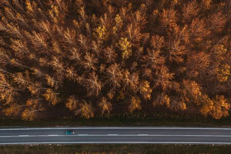 Traffic on the road through autumnal aspen tree forest, top view aerial photography from drone pov Zdjęcie Seryjne