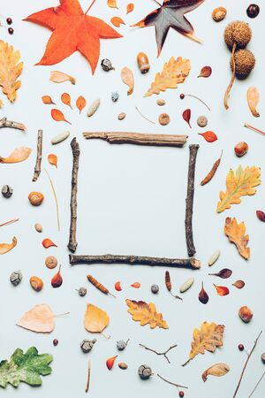Tree branches frame and autumn season decoration arrangement flay lay copy space top view