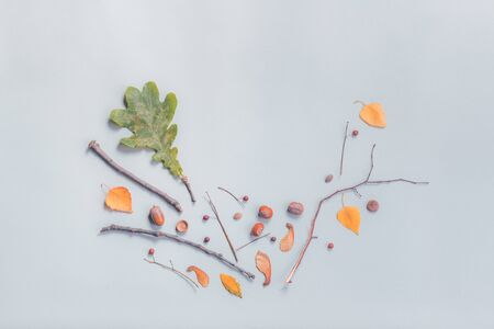 Autumn season flat lay decoration top view with leaves and branches, abstract minimal composition, copy space included Banco de Imagens