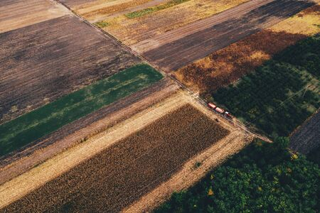 Aerial view, corn harvest scenery from drone pov, tractor with trailer in maize crop field
