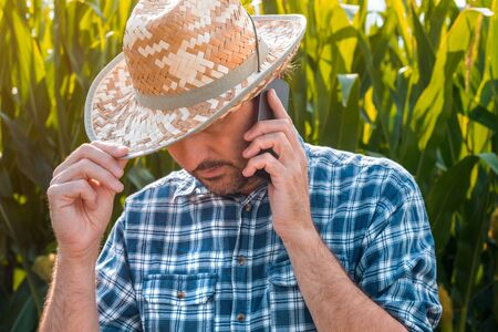 Corn farmer talking on mobile phone on crop plantation. Portrait of handsome male farm worker with plaid shirt and straw hat using smartphone for communication in cultivated agricultural field