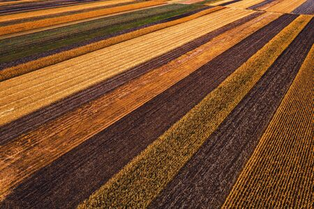 Agricultural fields from above, drone photography. Aerial view of colorful countryside patchwork vanishing in diminishing perspective,