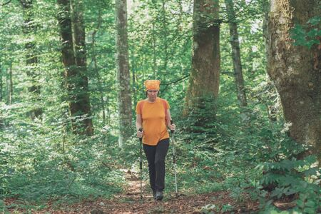 Woman hiker with trekking poles walking forest footpath alone on summer day,active holiday vacation concept