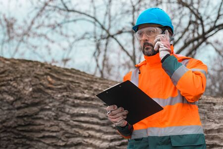 Forestry technician talking on mobile phone in forest during logging deforestation process Stock fotó