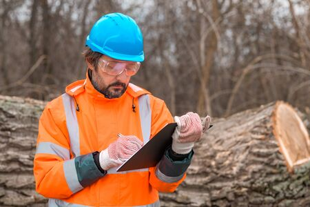 Forestry technician collecting data notes in forest during logging process Stock fotó
