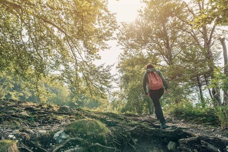 Female hiker walking outdoors in woods on summer vacation