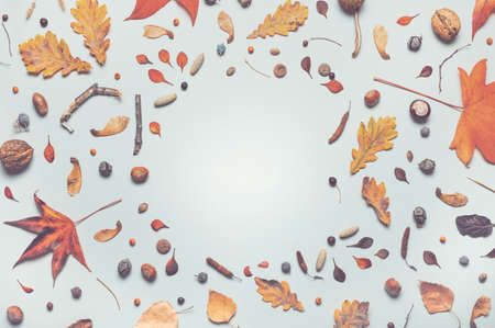 Autumn arrangement flat lay with copy space, top view of leaves and branches Banque d'images