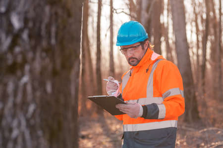 Forestry technician writing notes on clipboard notepad paper in forest during logging deforestation process