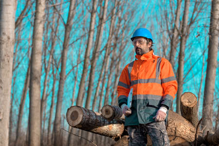 Forestry technician portrait during logging process in forest, holding clipboard notepad for data collection Stock fotó