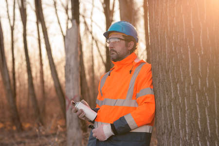Forestry technician labeling tree trunk for cutting in deforestation process, forester spray painting woods with aerosol can paint