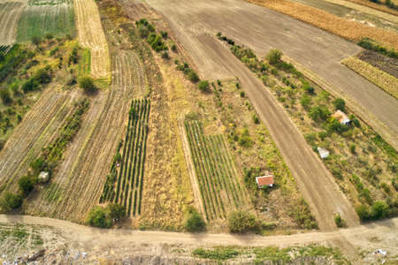 Small farm houses in field, aerial view rom drone pov