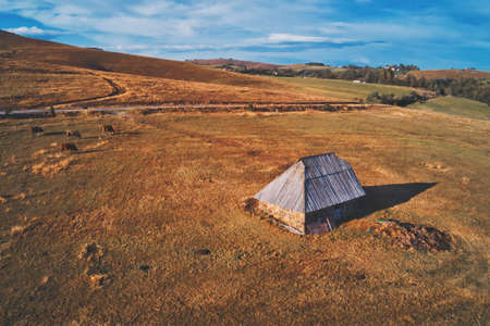 Traditional cowherds's cottage on pasture field on mount Zlatibor in Serbia on sunny autumn afternoon, aerial view