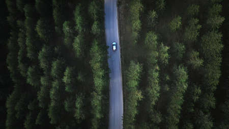 Aerial view of car on the road through pine wood forest from drone pov