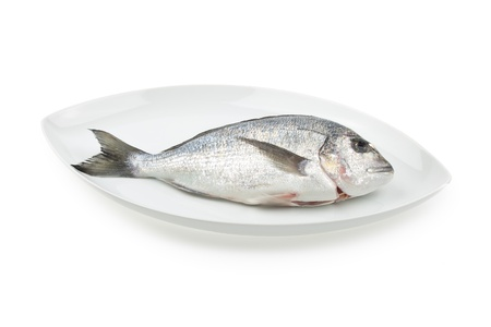 elliptic: Dorada seafood on a white elliptic plate isolated on white background with light shadow. Also known as bream sea fish. Raw food.