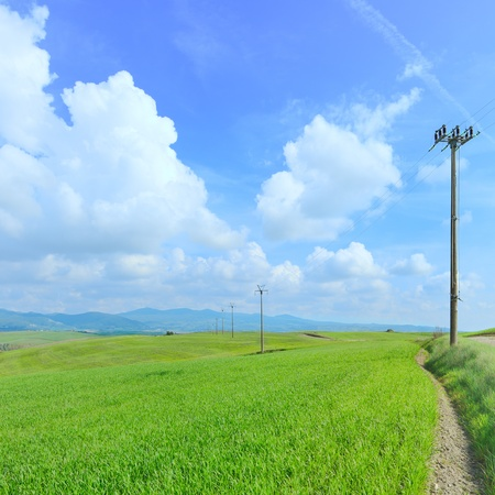Electric power line pylons in a green field photo