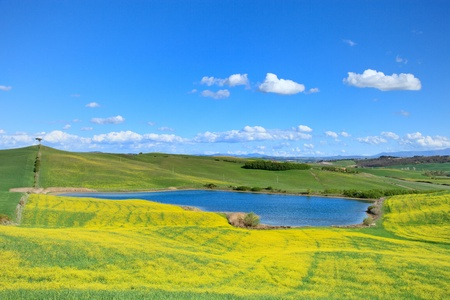 Tuscany, Crete Senesi landscape near Siena, Italy, europe. Small blue lake, green and yellow fields, blue sky with small clouds and a lonely pine tree on the left hill. photo