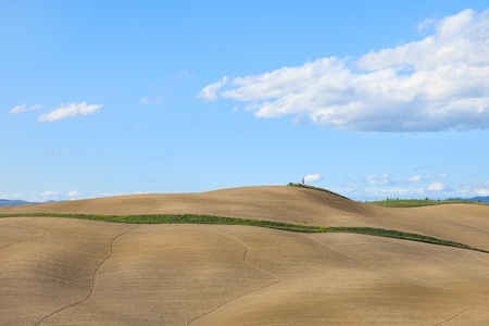 Tuscany, undulating plowed field, rural landscape in Crete Senesi, Italy, Europe  Subtle shadows, blue cloudy sky and small tree on the hill  photo