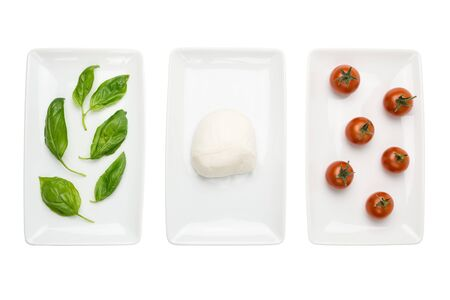 Italian food like green white red italian flag, basil mozzarella tomato dishes isolated on white background  photo
