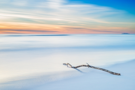 crepuscle: Wood branch on a white beach on twilight sunset time  Long Exposure Photography