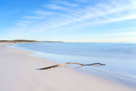 crepuscle: Wood branch on a white beach on sunset time  Long Exposure Photography