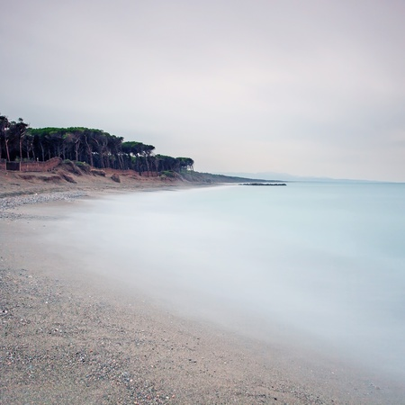 Ocean sand beach bay, pine forest and cloudy sky in a bad weather Stock Photo - 17811065