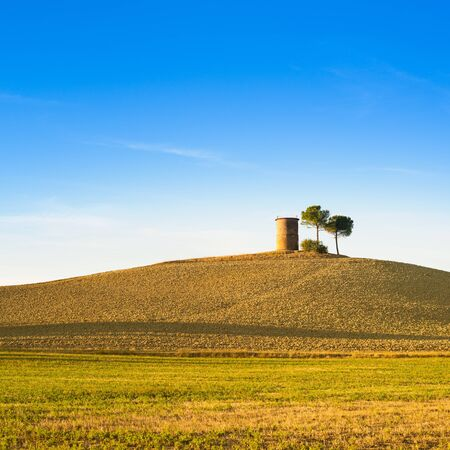 Tuscany, Maremma typical countryside sunset landscape with hill, tree and rural tower  photo