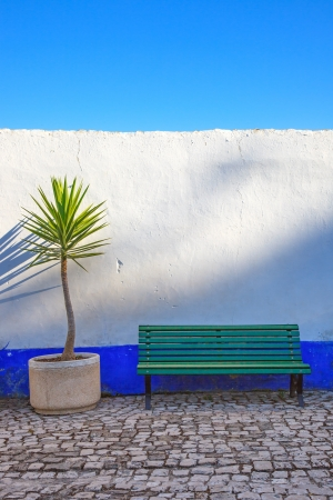 Dracaena cornstalk tropical plant and a wooden bench in front of a blue and white wall  Obidos, Portugal, Europe  photo