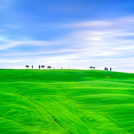 san quirico: Tuscany country landscape, cypress trees and green fields  San Quirico Orcia, Italy, Europe  Stock Photo