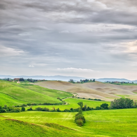 montalcino: Tuscany, rural landscape  Countryside farmland, trees, green field and cloud  Orcia Valley, Tuscany, Italy, Europe