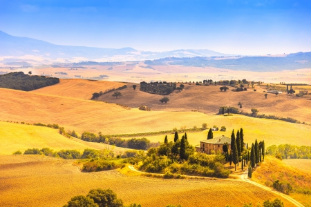 san quirico: Tuscany, farmland and cypress trees country landscape, green fields  San Quirico Orcia, Italy, Europe  Stock Photo