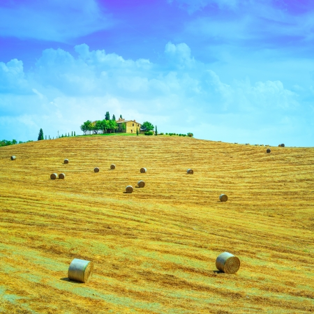 Tuscany, farmland country landscape, on hill top, hay rolls and harvested green fields  Val d Orcia, Italy, Europe  photo