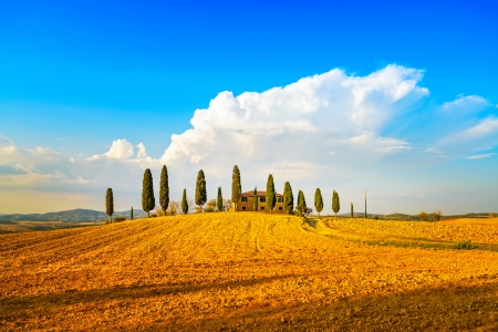 Tuscany, farmland and cypress trees and white road, country landscape  Siena, Val d Orcia, Italy, Europe  photo