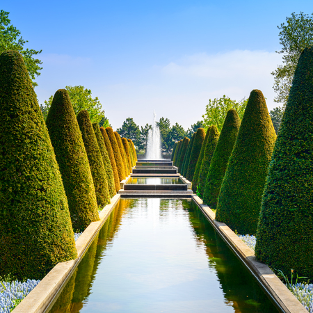 ornamental bush: Garden in Keukenhof, conical hedges lines, water pool and fountain  Netherlands, Europe