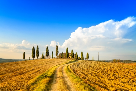Tuscany, farmland and cypress trees and white road, country landscape  Siena, Val d Orcia, Italy, Europe  스톡 콘텐츠