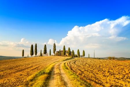 Toscane, landbouwgrond en cipressen en witte weg, land landschap Siena, Val d'Orcia, Italië, Europa