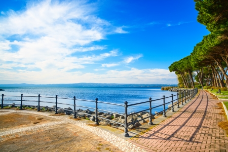 promenade: Promenade or esplanade and pine trees in Bolsena lake, Italy  Stock Photo