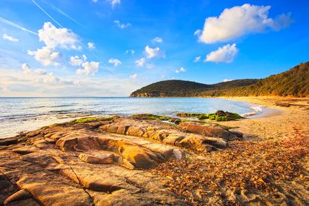 waterscape: Cala Violina bay beach in Maremma, Tuscany  Travel destination in Mediterranean sea  Italy, Europe  Stock Photo
