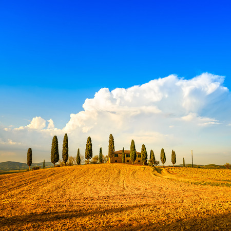 val d orcia: Tuscany, farmland and cypress trees and white road, country landscape  Siena, Val d Orcia, Italy, Europe  Stock Photo