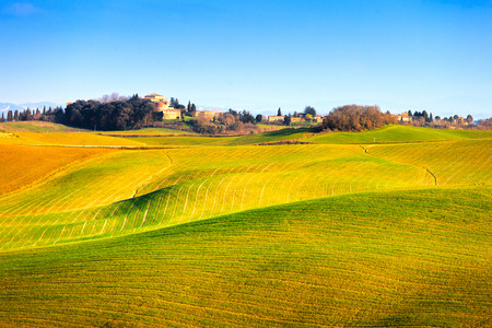 tuscan house: Tuscany, Crete Senesi country landscape, Italy, Europe  Rolling Hills, green fields with shadows and sunlight, blue sky partially cloudy and a farm with cypress trees in a row  Stock Photo