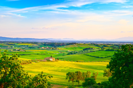 toscana: Maremma, rural sunset landscape  Countryside farm and green fields  Elba island on horizon  Tuscany, Italy, Europe