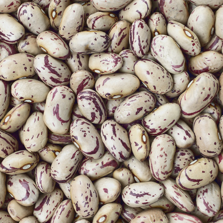 roman beans: Cranberry, Borlotti, Roman or Shell beans texture background or pattern. Raw legume food.