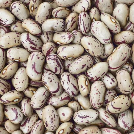 roman beans: Cranberry, Borlotti, Roman or Shell beans texture background or pattern. Raw legume food.