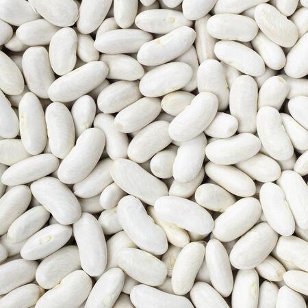 legumbres secas: Marina, la judía, guisante blanco, riñón blanca o Cannellini habas textura de fondo o patrón. Alimentos leguminosa Raw. Foto de archivo